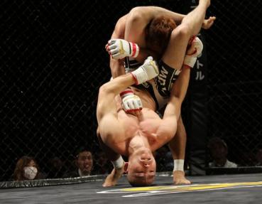 MMA je zmesou mnohých bojových umení