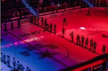 Niektoré informácie týkajúce sa majstrov ľadového hokeja