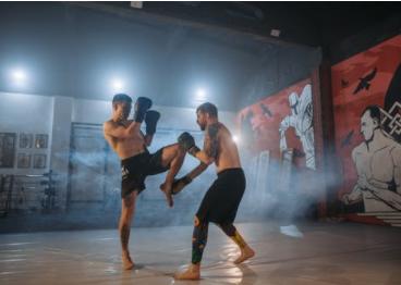 Z násilia v boji čo hovoria bojovníci zmiešaných bojových umení