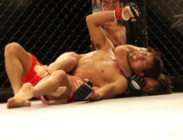 Zoznámte sa s prekvapujúcimi úmrtiami, ku ktorým došlo v MMA